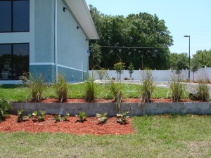 PBTS Septic System Tampa, FL