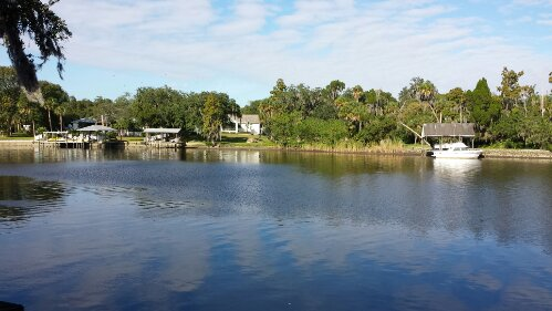 Septic Systems near the Alafia River