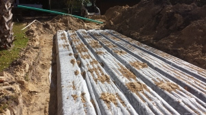 Drainfield that is low profile